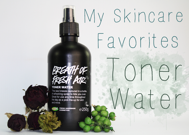 My Skin Care Favorites Toner Water